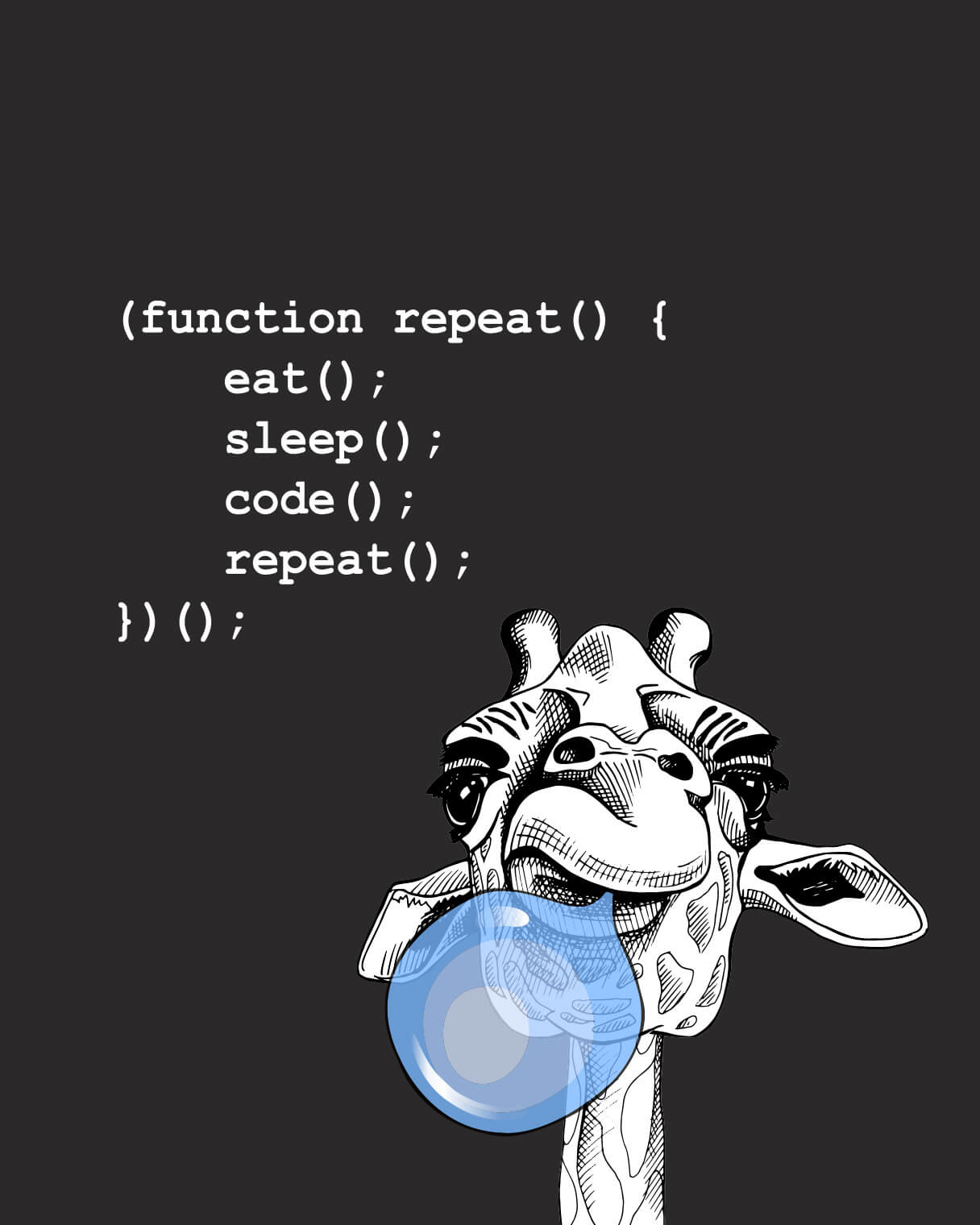 Individuelle Programmierung für's Web